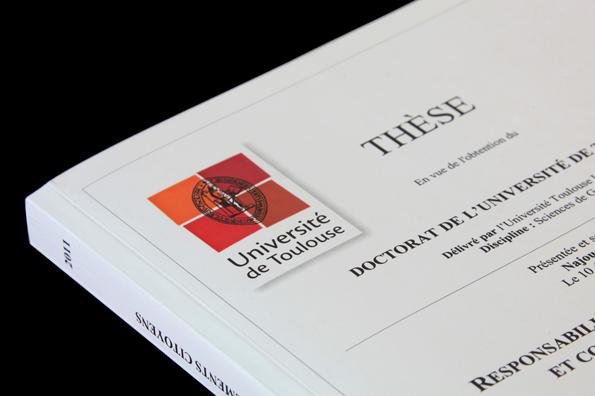 Berühmt Rapport livré en france | Impression en ligne: thèse, mémoire  DY98